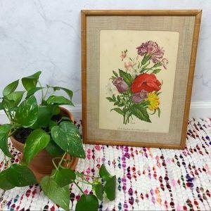 Vintage 50s Botanical Floral Poppy Framed Print